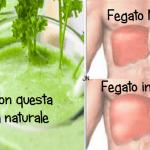 Depura il tuo FEGATO (in sole 72 ore) con questa bevanda Naturale… Efficace!