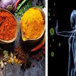 Curcuma, Zenzero, Aglio e… Ecco i 10 Antibiotici NATURALI che agiscono sui batteri di oggi