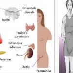Scompensi Ormonali: I sintomi che spesso non vengono notati! E' importante sapere. Ecco perché