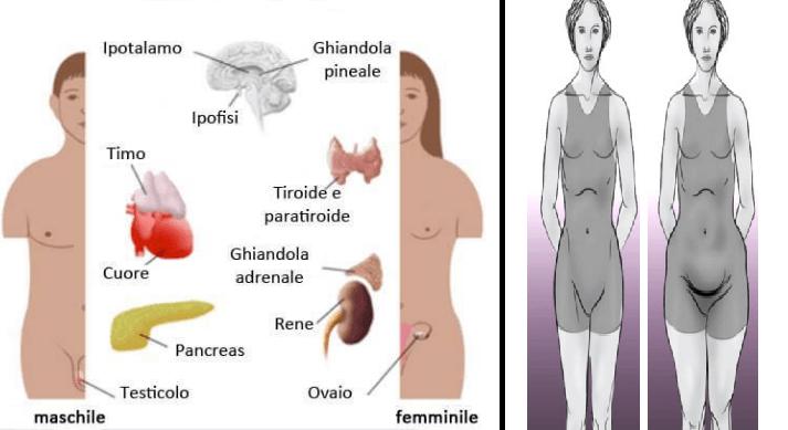 SCOMPENSI ORMONALI