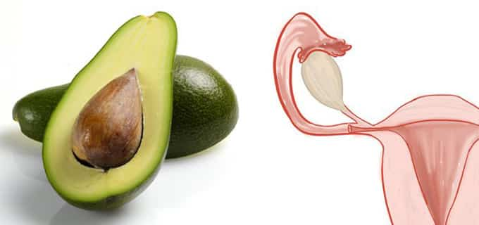 avocado fa bene all' utero