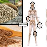 Ecco cosa accade al tuo corpo se mangi tutti i giorni la combinazione perfetta di questi semi…
