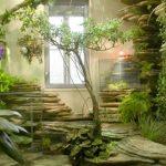 Nasa: Le 6 piante che in casa ripuliscono l'aria e migliorano la qualità della nostra vita
