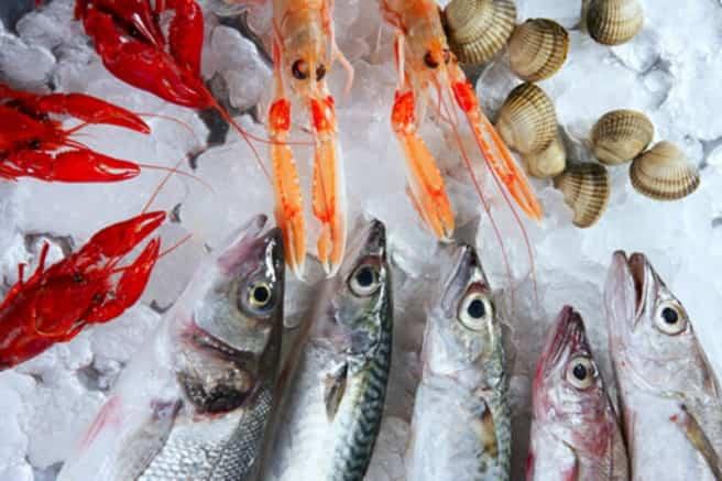 pesce truccato cafados