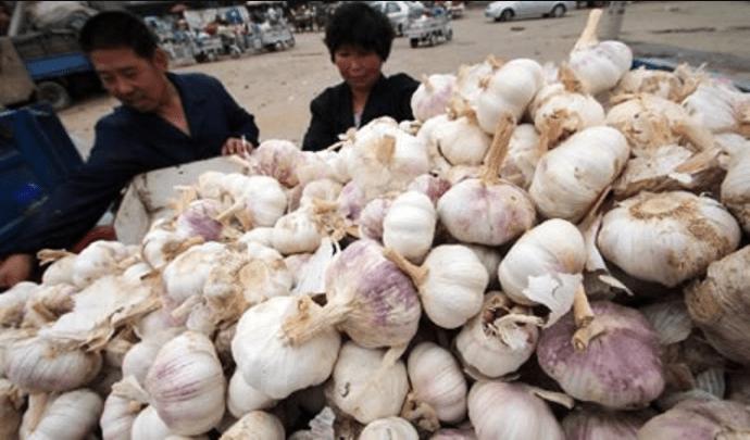 aglio cinese pieno di pesticidi